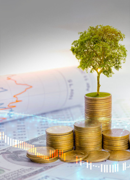 A tree growing both on the progress of money and financial reports